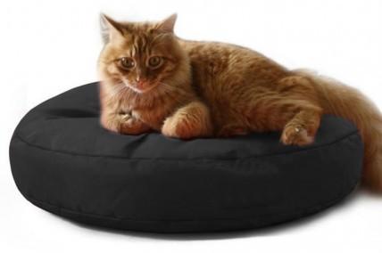 Pelech pro kočku, zdroj: emi.sk